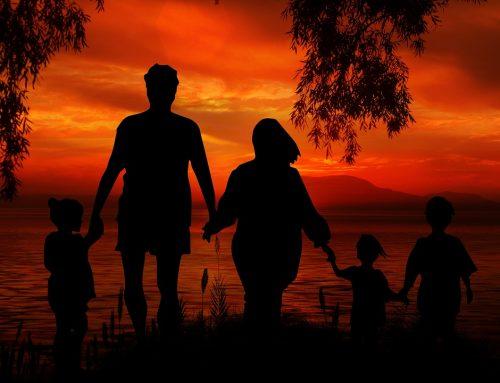 Воспитание и обучение детей младшего возраста